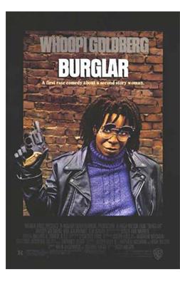 Burglar - affittasi ladra